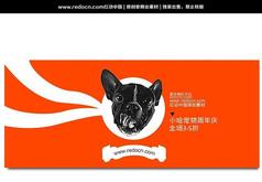 宠物周年庆海报