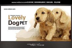 狗狗宠物背景设计