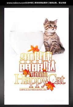猫咪宠物宣传海报