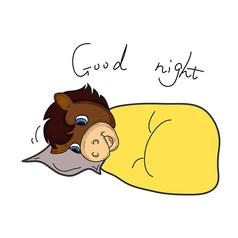 睡觉的卡通马